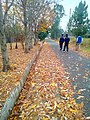 ASPT Abbottabad.jpg
