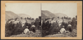 A View from Cold Spring, looking North, by E. & H.T. Anthony (Firm) 4.png