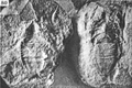 A monograph of the terrestrial Palaeozoic Arachnida of North America photos 76-82 80.png