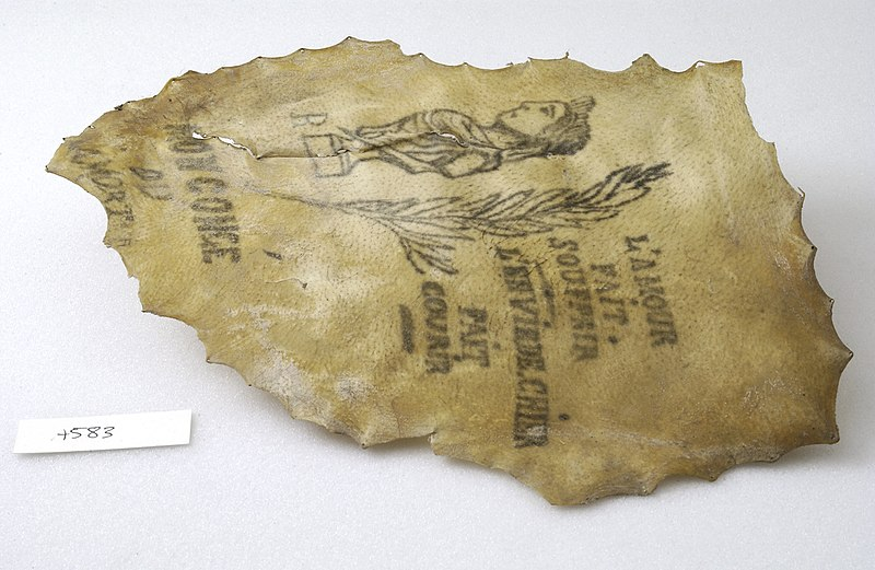 File:A tattoo on a piece of human skin showng a Greek style bust Wellcome L0036383.jpg
