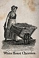 A woman is pushing a large barrow full of cherries. Etching. Wellcome V0039664.jpg