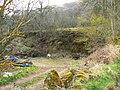 Abandoned quarry - geograph.org.uk - 1241719.jpg