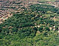 Aerial view of woodland west of Thundersley Glen, Benfleet - geograph.org.uk - 1574260.jpg