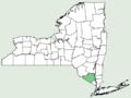 Ajuga genevensis NY-dist-map.png