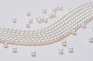 Cultured pearl pearl created under human-controlled conditions