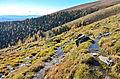 Albeck Seebachern Neuwirtalm Quelle 25102013 362.jpg