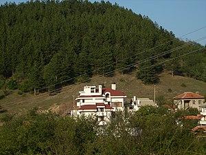 Aleksi's House.JPG