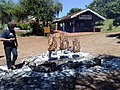 Almoço 10-04-2010 - Hotel Fazenda Água Azul. - panoramio.jpg