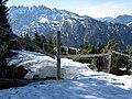 Alpenpflanzengarten Zaun im Winter.jpg