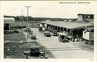 Wiggins, Mississippi - American Pickle and Canning Co., Wiggins, MS, circa 1910