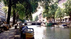 Amsterdam canal trees.jpg