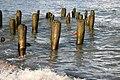 An abandoned boat pier - panoramio - Laima Gūtmane (simka….jpg