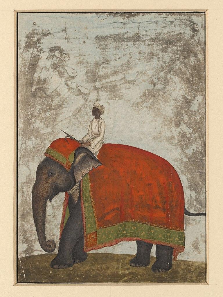 Indian Painted Elephant Art