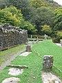 Ancient graves at the Reffert Church, Glendalough - geograph.org.uk - 1549208.jpg