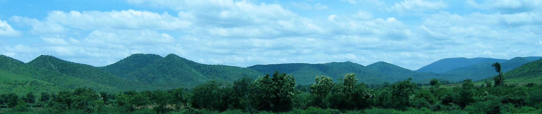 Endemic and endangered plant species of tirumala hills