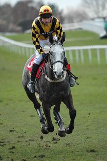 Andrew Thornton British jockey