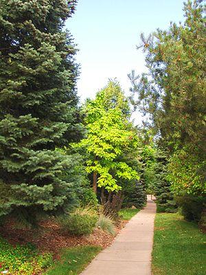 Image of Andrews Arboretum: http://dbpedia.org/resource/Andrews_Arboretum