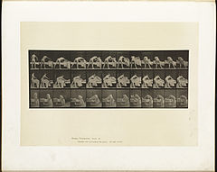 Animal locomotion. Plate 436 (Boston Public Library).jpg