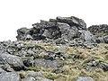 Approaching the summit of Gyrn Goch - geograph.org.uk - 344131.jpg
