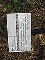 Apricot sign - Gardenology.org-IMG 0646 bbg09.jpg