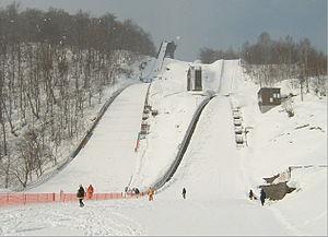 嵐山市民スキー場 - Wikipedia