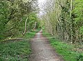 Ashby Woulds Heritage Trail - geograph.org.uk - 797839.jpg