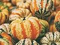 Autumnal Squash (Unsplash).jpg