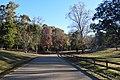 Avent Park road Oxford Mississippi.jpg