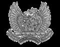 Ayr Yeo Badge.png