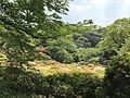 Azalea Valley in Mifuneyama Garden 8.jpg