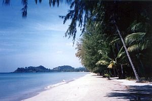 Ko Chang District - Hat Khlong Phrao Beach