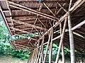 Bambù Vergiate.jpg