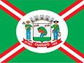 Bandeira do Município de caarapo.jpg