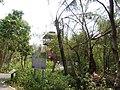 Bang Kachao, Phra Pradaeng District, Samut Prakan, Thailand - panoramio (2).jpg
