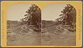 Banks of Tuyra River, Pinogama, from Robert N. Dennis collection of stereoscopic views.jpg