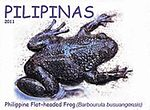 Barbourula busuangensis 2011 stamp of the Philippines 2.jpg