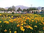 Barki Park