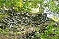 Basaltprismenwand am Gongolfsberg 04.jpg
