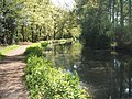 Basingstoke Canal at Brookwood - geograph.org.uk - 1275155.jpg