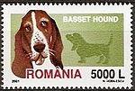 Basset-Hound-Canis-lupus-familiaris Romania 2005.jpg