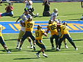 Bears on offense at UCLA at Cal 2010-10-09 18.JPG