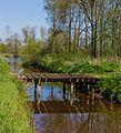 Beekdal Linde Bekhofplas. Een waardevol natuurterrein van Staatsbosbeheer in de provincie Friesland 18.jpg
