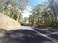 Benandarah NSW 2536, Australia - panoramio (20).jpg