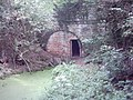 Berwick tunnel, the Shrewsbury canal - geograph.org.uk - 81562.jpg