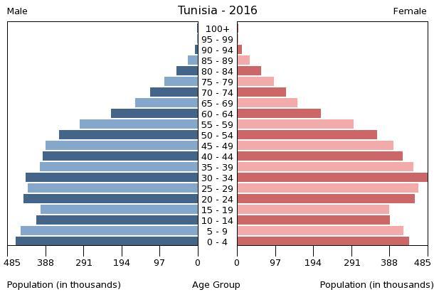 Bevölkerungspyramide Tunesien 2016