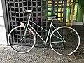 Bicicleta CAG.jpg