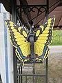 Big yellow butterfly (6163996491).jpg