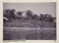 Bild från familjen von Hallwyls resa genom Egypten och Sudan, 5 november 1900 – 29 mars 1901 - Hallwylska museet - 91631.tif