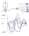 Bipolar mood shifts-ar.png