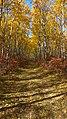 Birds Hill Provincial Park, Manitoba (481669) (13490244255).jpg